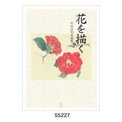画像1: 花を描く 堅山南風素描集
