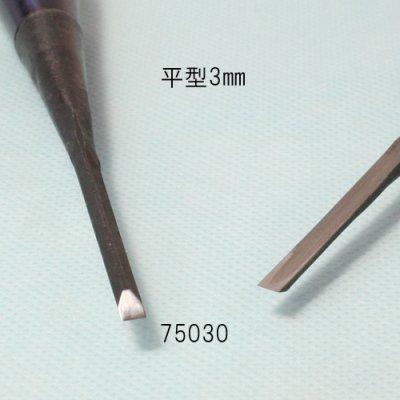 画像2: たたきのみ 平型3mm