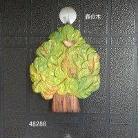 森の木 24mm シナ材