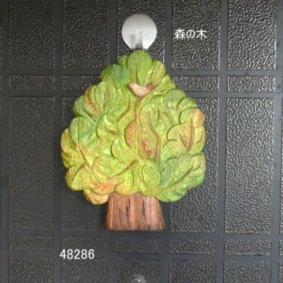 画像1: 森の木 24mm シナ材