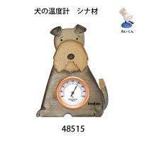 温度計 犬