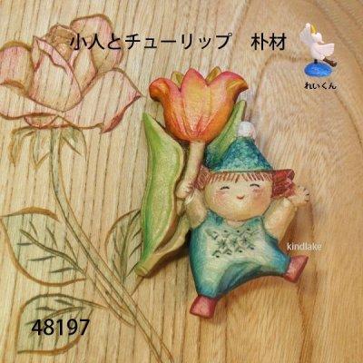 画像1: 小人とチューリップ ピン付